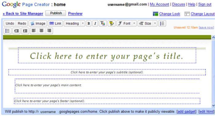 Default Google Page