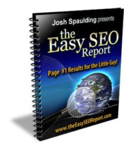 The Easy SEO Report